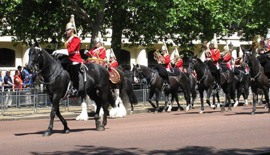 Trooping the Colour guided tour