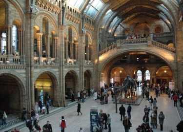 Natural History Museum driver tour