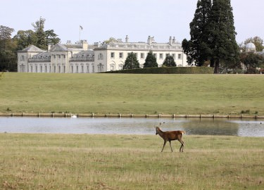 Woburn Abbey guided tour