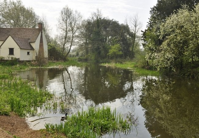 Flatford Mill Guided Tour