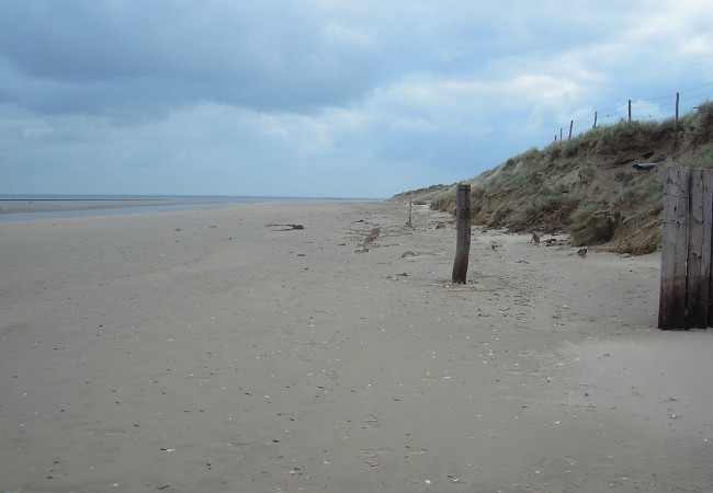 Utah Beach guided tour